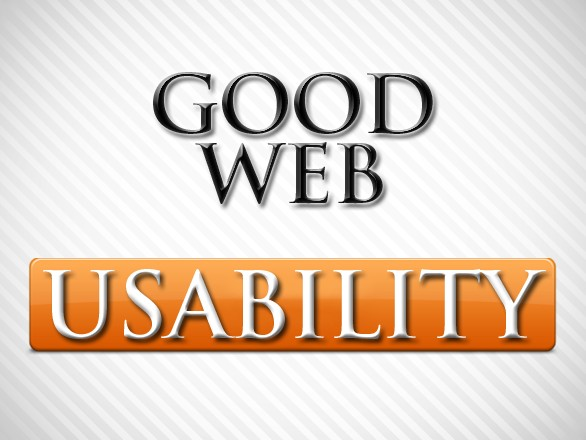 What Constitutes Good Web Usability?