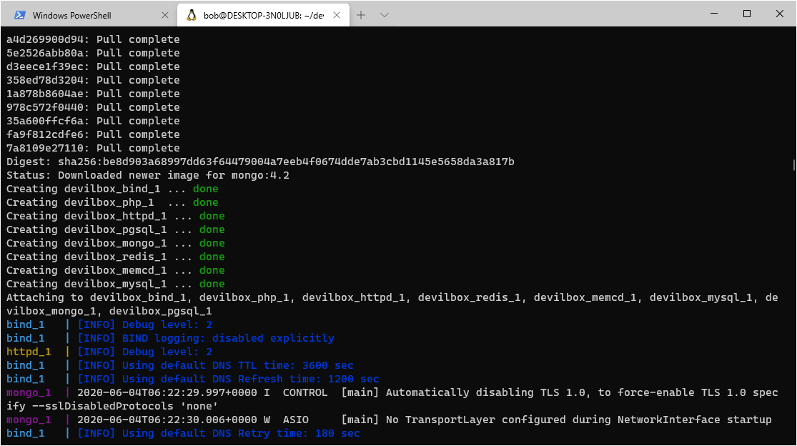 start-devilbox-containers-terminal