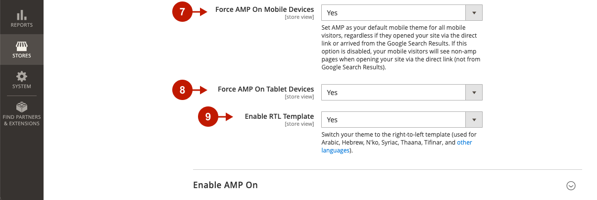 Magento 2 AMP Extension Main Settings 3